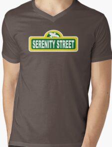 SHINY PLACE Mens V-Neck T-Shirt