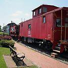 Train Museum by Sandra Lee Woods