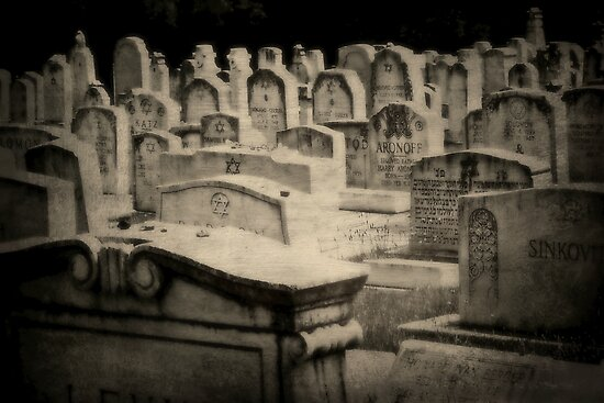 A Dark History by Scott Mitchell