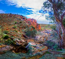 Moss Rocks - Mannum Falls, Murraylands, South Australia by Mark Richards