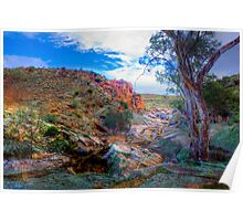 Moss Rocks - Mannum Falls, Murraylands, South Australia Poster