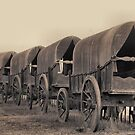 Wagons of Yesteryear by Carisma