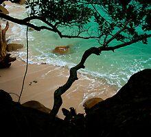 Nudey Beach - Fitzroy Island National Park by asskwoo