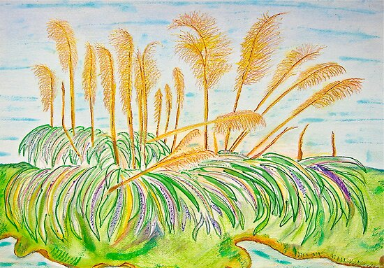 Pampas Grass on the Creek by Christine Chase Cooper