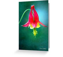Colorful Columbine Greeting Card