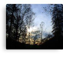 Coniston Tarn Sunlit Trees  Canvas Print