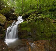 Holtwood Falls by Tim Devine