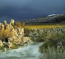 Tufas and the Sierra Nevada by Peter Hammer