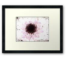 Floral virtue Framed Print