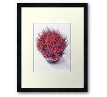 """""""Blush"""" Brush Framed Print"""