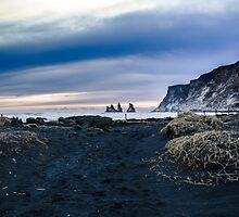 Black Sand Beach at Vik, Iceland by Linsey Walker