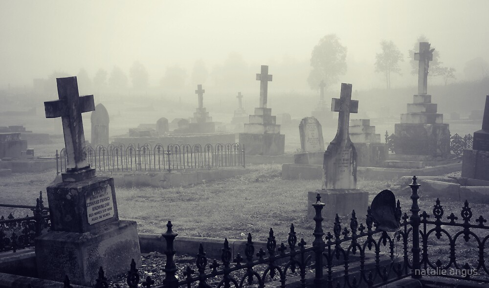 fog in the graveyard by natalie angus