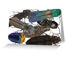 Jewel Beetle Crowd Greeting Card