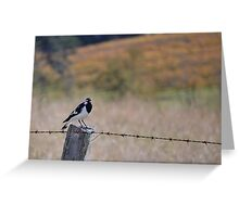 Little bird on a wire Greeting Card