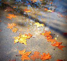 Telling of autumn by Kablwerk