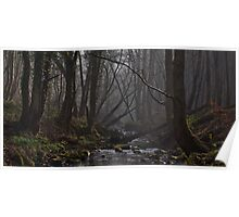 Ousbrough Woods Poster