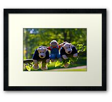 Monkey and the bears Framed Print