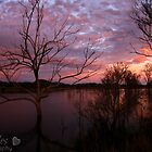 Evening Falls by chloemay