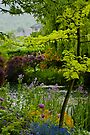 Monet's Garden - The Lake and the Lodge by Rhoufi