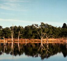 Reflections of a Queenslander Sticker