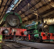 Tanfield Engine Shed by Great North Views