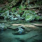 Bash Bish Brook by Jamie Lee