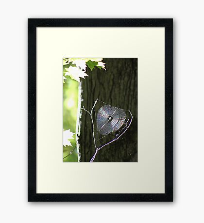 World Wide Web Framed Print