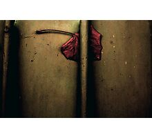 The Imprisoned Heart ..... Photographic Print