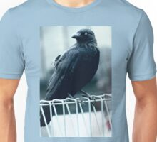 "Quoth The Raven ""Nevermore"" Unisex T-Shirt"