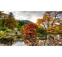 Autumn Garden Photographic Print