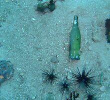 Burma Beer Bottle by Robert Iles