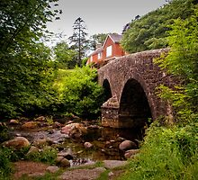 Dartmeet Bridge at Badgers Holt on Dartmoor National Park by Jay Lethbridge