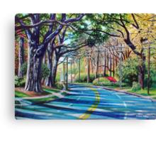 'Entering Myers Park' Canvas Print