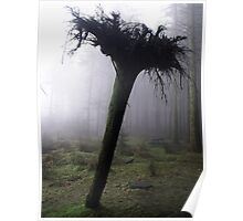 Whoops ! An Upside Down Tree ! Poster