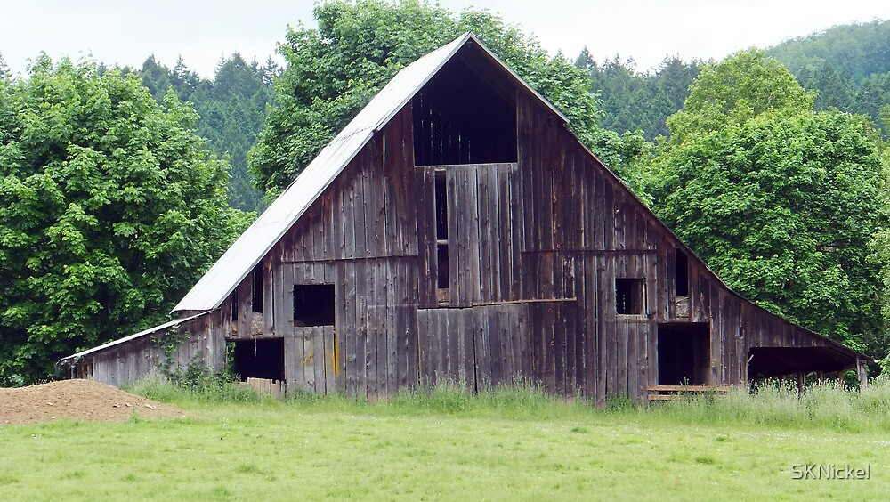 Old weathered barn by SKNickel