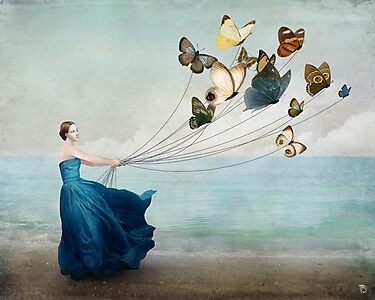 Wonderland by ChristianSchloe