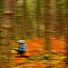 Impressionist in the woods by rolandkeates