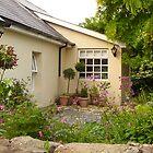 An Irish Garden In May by Fara