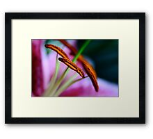 What A Relief... Things Are Finally Starting To Look Up! Framed Print