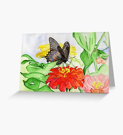 The New Creation….the Black Swallowtail Butterfly Greeting Card