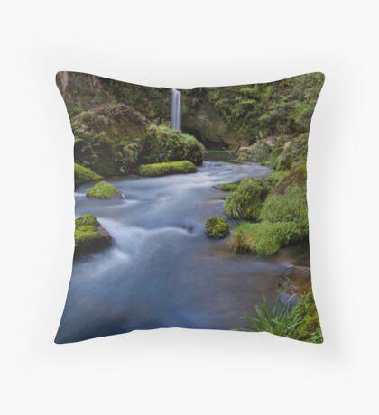 Omanawa River Throw Pillow