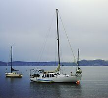 Boats on the Bay by Jacqui7