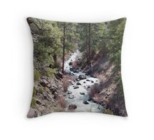 Down in the Rio Grande Gorge Throw Pillow