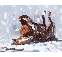 Horse-  snowflake fun Photographic Print