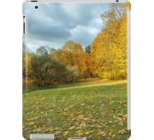 falling leaves iPad Case/Skin