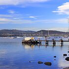 Cornelian Bay by Jacqui7