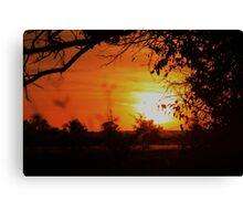Kansas Orange Sunset with Trees Silhouette Canvas Print