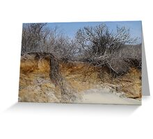 Lucy Vincent Beach, Martha's Vineyard Greeting Card