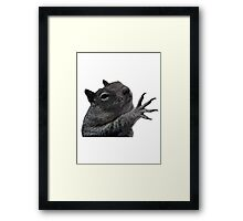 Plzzzzz Squirrel Framed Print