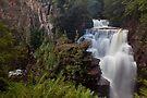 D'Alton Falls by Travis Easton